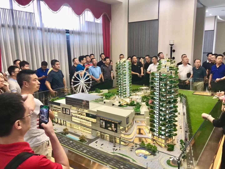 绵阳市房地产协会、住建委、长虹置业绵阳分公司等18个单位的领导一行——参观考察项目
